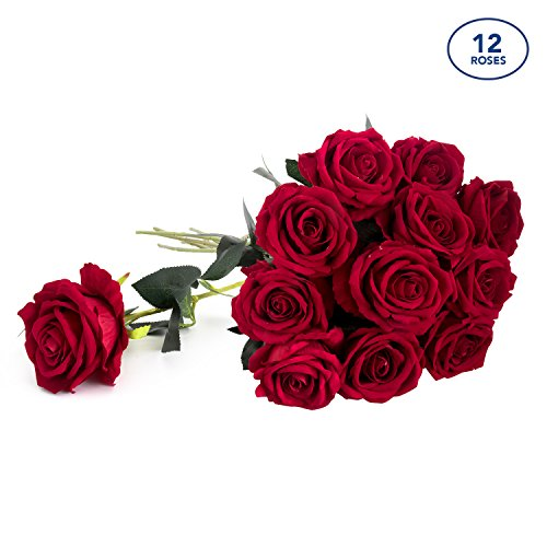 "Royal Imports Artificial Silk Roses Red Velvet 30"" Long Stemmed, 1 Dozen Fake Flowers for Bouquets, Weddings, Valentines By"