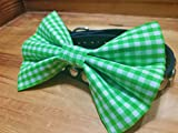 Green Gingham Checkered Pet Bow Tie