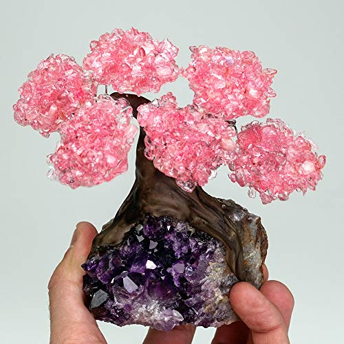 Astro Gallery Of Gems The Love Tree - Small - Genuine Rose Quartz Clustered Gemstone Tree on Amethyst Matrix