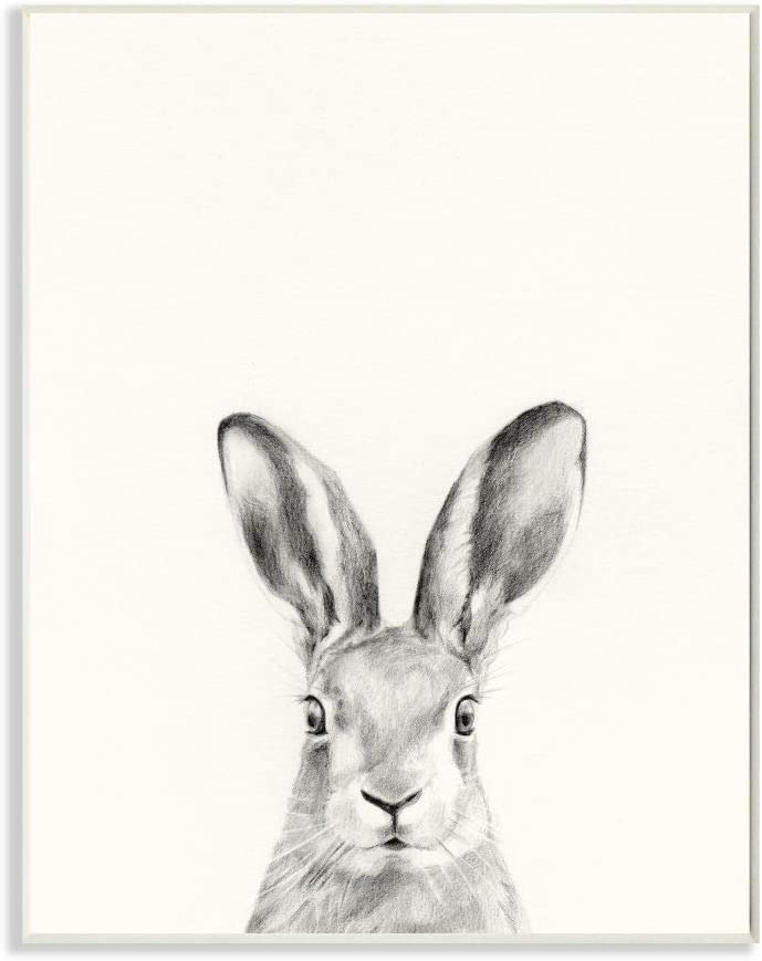 Stupell Industries Bunny Rabbit Portrait Grey Drawing Design, Designed by Victoria Borges Art, 13 x 0.5 x 19, Wall Plaque
