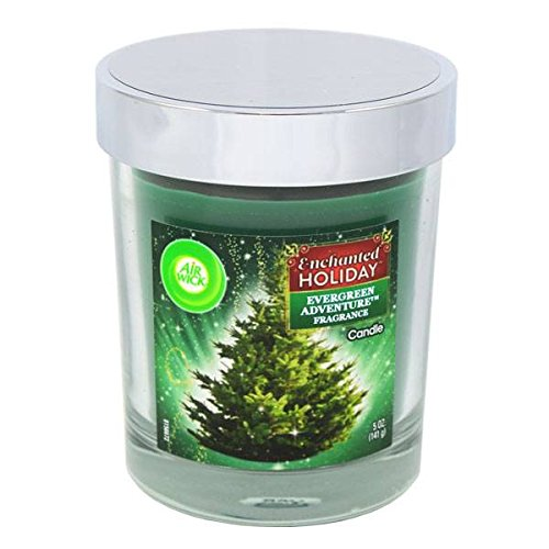 AirWick Candle 5oz Evergreen , Case of 48