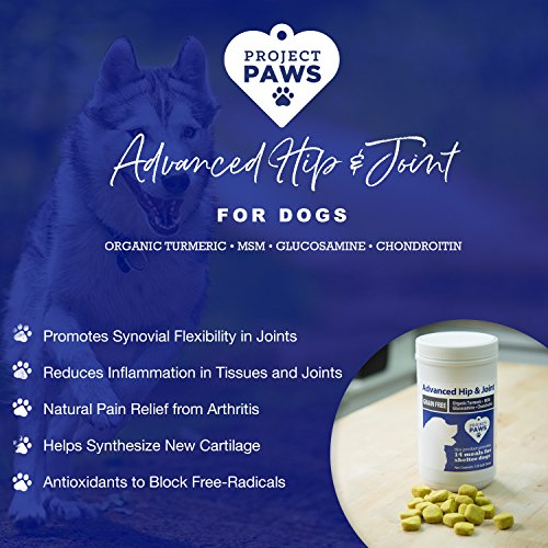 Project Paws Hip and Joint Supplement for Dogs - Dog Glucosamine Chews with MSM, Chondroitin and Organic Turmeric - 120 CT by Project Paws (Image #2)