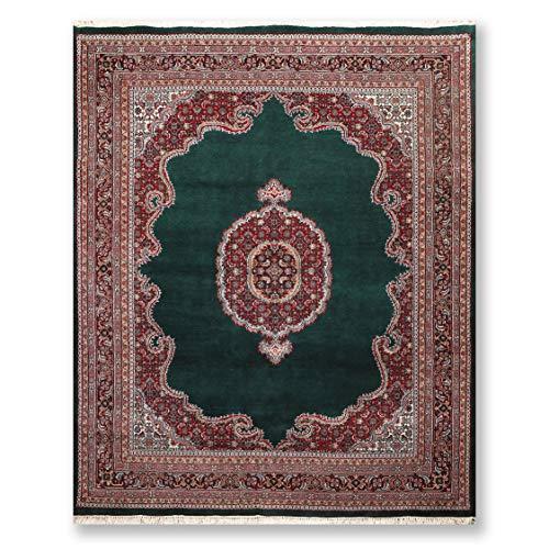 (8'x9'10 Green Red Black, Rust, Tan, Ivory, Blue, Multi Color Hand Knotted Persian Oriental Area Rug Wool Traditional Bidjar Medallion Design Oriental Rug)