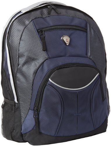 CALPAK Mentor Navy Blue 17-inch Deluxe Backpack with 15-inch Laptop Compartment