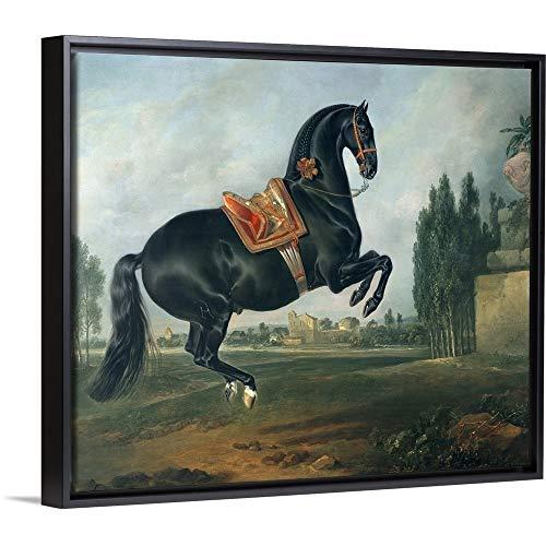 "Johann (1672-1737) Hamilton Floating Frame Premium Canvas with Black Frame Wall Art Print Entitled A Black Horse Performing The Courbette 24""x20"""