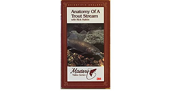 Amazon.com: Anatomy of a Trout Stream [VHS]: Rick Hafele: Movies & TV