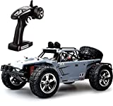 TOZO C5031 RC CAR Desert Buggy Warhammer High...