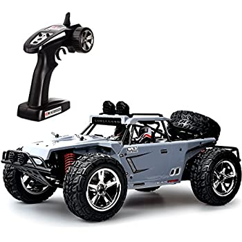 Amazon Com Tecesy Rc Car Mph Desert Buggy Off Road Vehicle