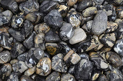 """Fantasia Materials: 3 lbs Tumbled Silver Leaf Jasper Stones from Africa - 1.25"""" to 1.5"""" avg. - Bulk Natural Polished Gemstone Supplies for Crafts, Reiki, Crystal Healing and More! (Size #8)"""