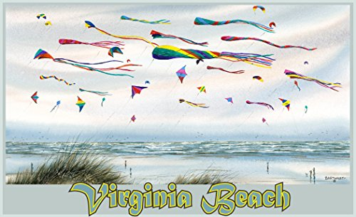 Northwest Art Mall Virginia Beach Flying Kites Print by Artist Dave Bartholet, 11