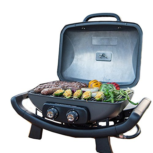 Nexgrill Fortress - 2 Burner Cast Aluminum Table Top Gas Gri