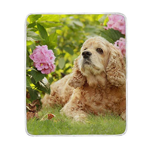 My Daily English Cocker Spaniel Dog Flower Throw Blanket Polyester Microfiber Lightweight Couch Bed Blanket 50x60 inch