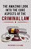 AMAZING LOOK INTO THE CORE ASPECTS OF THE CRIMINAL LAW