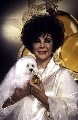 (Elizabeth Taylor holding her dog and a bottle of perfume Photo Print (24 x 30))
