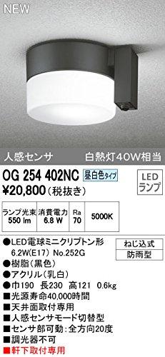 オーデリック エクステリアライト ポーチライト 【OG 254 402NC】OG254402NC B01AHQFBNM 10311