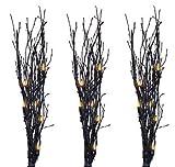 3PC BLK Glitter Twigs