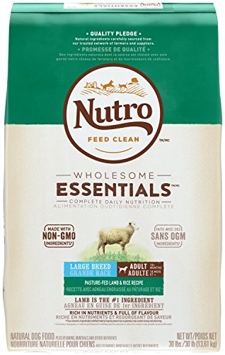 NUTRO WHOLESOME ESSENTIALS  Large Breed Adult Pasture-Fed Lamb & Rice Recipe 30 Pounds
