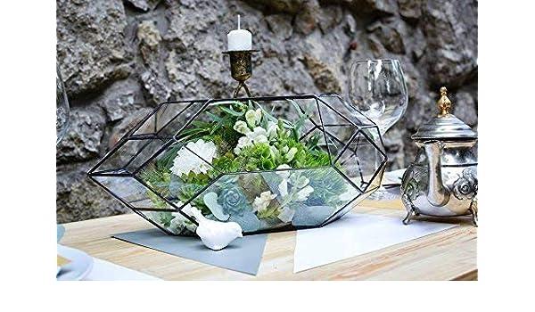 Amazon Com Stained Glass Orchid Terrarium Rocket Wedding Box