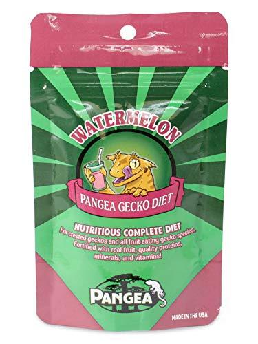 Pangea Fruit Mix Watermelon Complete Gecko Diet 2 oz, Green
