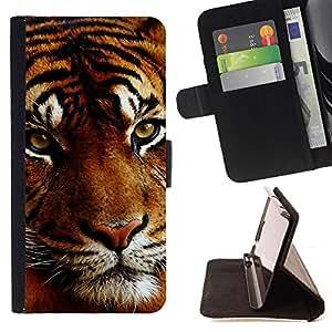 - CAT MUZZLE TIGER ANIMAL BIG ORANGE SLEEPY - - Prima caja de la PU billetera de cuero con ranuras para tarjetas, efectivo desmontable correa para l Funny HouseFOR LG G2 D800