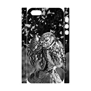 Owl Design Cheap Custom 3D Hard Case Cover for iPhone 5,5S, Owl iPhone 5,5S 3D Case