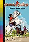 Grand Galop, Tome 17 : Un cheval capricieux par Bryant