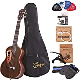 Paisen Tenor ukulele 26 inch professional rosewood ukuleles send a full set of accessories