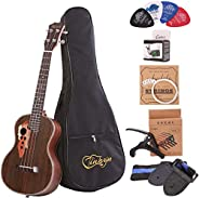 Paisen Tenor ukulele 26 inch professional rosewood ukuleles send a full set of accessories