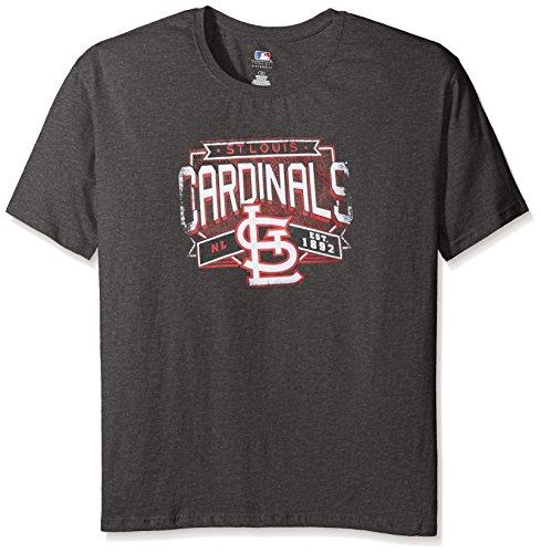 MLB St. Louis Cardinals Women's Team Short Sleeved Screen T-Shirt, 1X, Charcoal/Heather