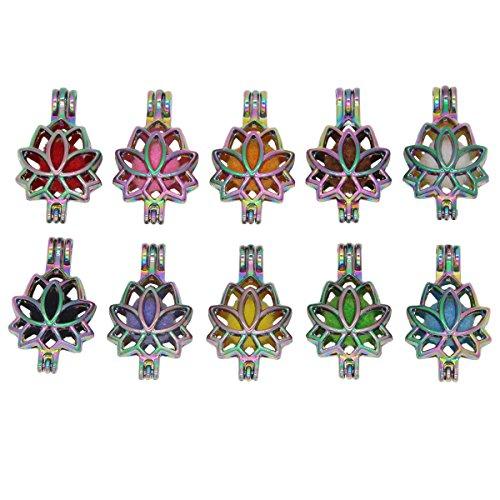 10pcs Rainbow Color Lotus...