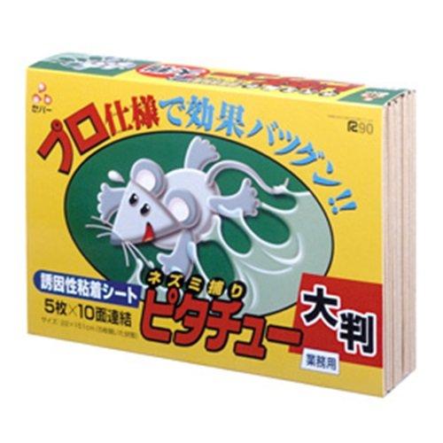 【ケース販売】ネズミ捕り セハー ピタチュー 大判 5枚(10面)連結×10個 B07534C8T9