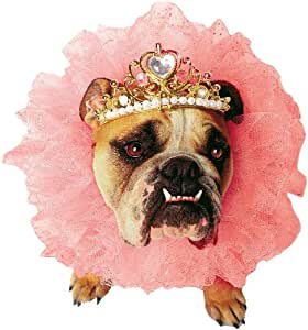 Lets Party By Paper Magic Group Zelda Wisdom - Queen Dog Costume - Size Small