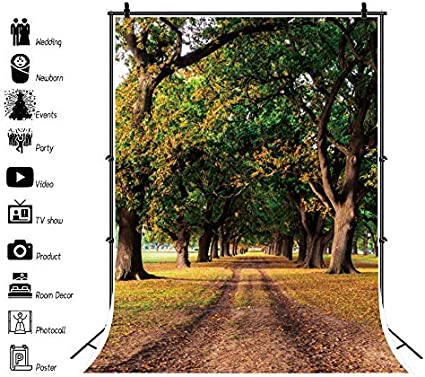 CSFOTO Autumn Backdrop 8x10ft Background for Photography Park Path Fallen Leaves Trees Autumn Theme Party Decor Natural Scenery Interior Decor Adults Portraits Wallpaper