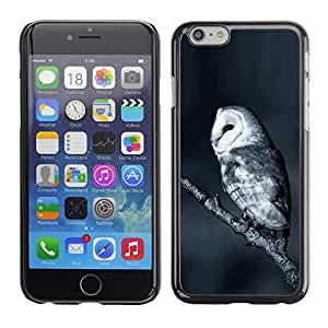 LECELL -- Funda protectora / Cubierta / Piel For Apple iPhone 6 Plus 5.5 -- The White Night Owl --