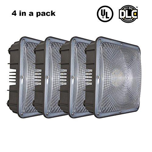 Outdoor Commercial Lighting Rental - 1
