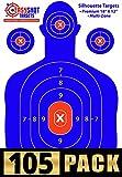 electric target shooting -