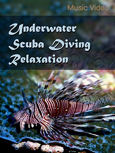 Underwater Scuba Diving - Ray South Park