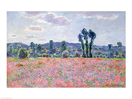 (Poppy Field, 1887 by Claude Monet Art Print, 19 x 14 inches)