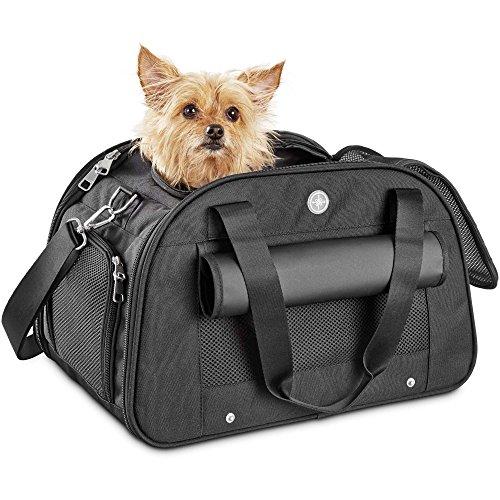Good2Go Ultimate Pet Carrier in Black, Medium