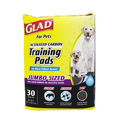 8 best potty training pads for dogs xl for 2020