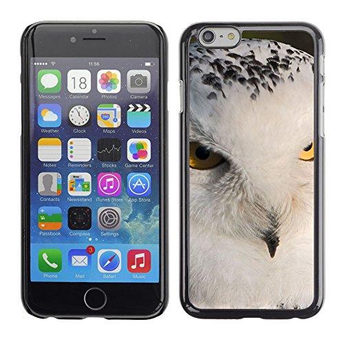 "Premio Sottile Slim Cassa Custodia Case Cover Shell // V00003862 Harfang des neiges // Apple iPhone 6 6S 6G PLUS 5.5"""