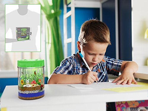 51LTiuRWTOL - Light-up Terrarium Kit for Kids with LED Light on Lid | Create Your Own Customized Mini Garden in a Jar that Glows at Night | Great Science Kits Gifts for Children | Kids Toys | by Mini Explorer