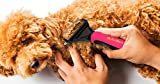 My-Pet-Barn-Dog-Grooming-Rake-Brush-Best-Pet-Care-Tools-Supplies-for-Small-Big-Short-or-Long-Hair-Dogs-Easily-Groom-Pets-on-Your-Table-With-Ergonomic-Handle-for-Relaxed-Comfortable-Grip