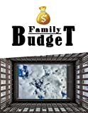 Family Budget: Bill Planner & Organizer Book, Monthly, Weekly Financial Planning / Large Spacious Softback Notebook * 12 months * for Personal or ... City (Budget Planners and Organizers)