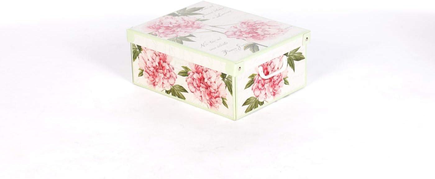 Grande Kanguru Collection Caja en Carton Multicolor