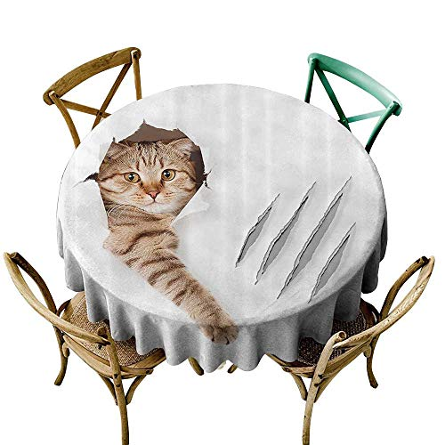 one1love Indoor/Outdoor Round Tablecloth Animal Funny Cat in Wallpaper Hole with Claw Scratches Playful Kitten Cute Pet Picture Dinner Picnic Table Cloth Home Decoration 35 INCH Brown White