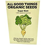 Sugar Beet Seeds (~200): Certified Organic, Non-GMO, Heirloom, Open Pollinated Seeds from The United States