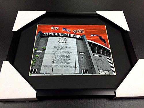 MEMORIAL STADIUM BALTIMORE ORIOLES COLTS RAVENS ART WORK 8x10 Framed Photo