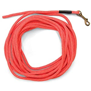 SportDOG Brand Orange Check Cord – 30 Feet Long – Strong but Lightweight Training Tool – Highly Visible and Floats – SAC00-11746