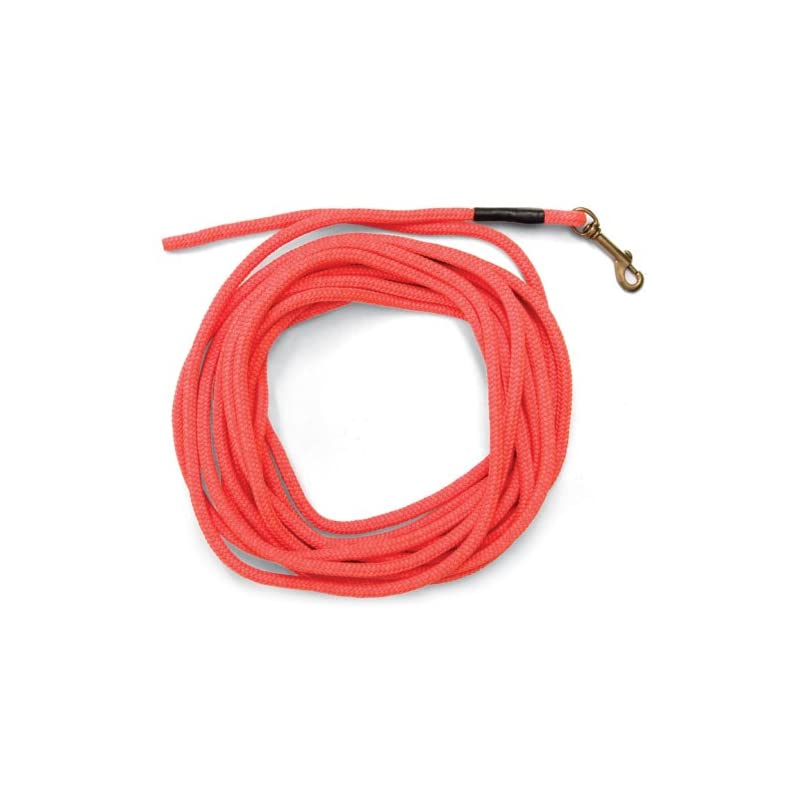 dog supplies online sportdog brand orange check cord - 30 feet long - strong but lightweight training tool - highly visible and floats - sac00-11746